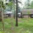 Dorf im Dschungel Ost-Java